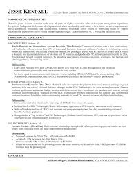 Sample Insurance Executive Resume Free Resume Samples Templates Or