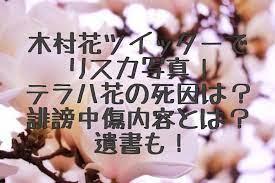 木村 花 リスカ 写真