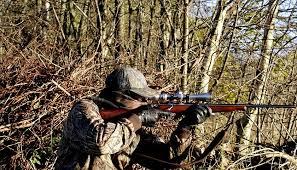 Michigan Bill Aims To Extend Firearm Deer Hunting Season