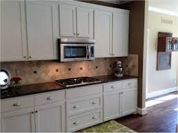 white shaker cabinet doors. Incredible Graceful Rustic Shaker Style Kitchen Cabinets White Cabinet Door Styles Doors