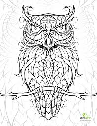 Small Picture 584 best Pattern Owls images on Pinterest Coloring books