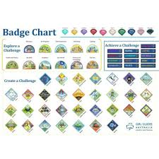 Online Badge Badge Chart A3