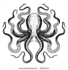 Small Picture Octopus Sketch Drawing Illustration for Download coloring