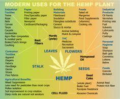 Hemp Uses Chart Industrial Hemp Uses And Benefits