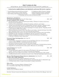 Sample Resume Chief Administrative Officer Inspirational Sample
