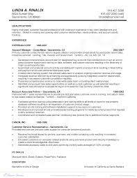 Account Management Resume Free Account Management Resume Templates At Allbusinesstemplates 10