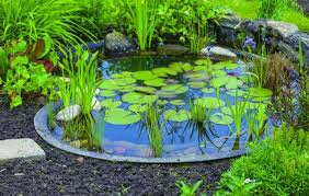 garden ponds. Ideas For Garden Ponds Large And Small E