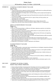 Download Payments Product Manager Resume Sample as Image file