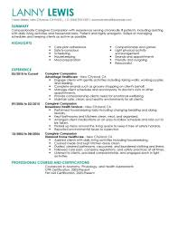 Companion Job Description For Resume Best Caregivers Companions Resume Example LiveCareer 1