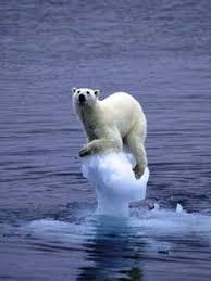Resultado de imagen de cambio climático global