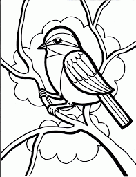 Coloring Pages Photo Birds And Pictures Coloring Pages Images Bird