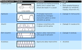 Abnormal Breathing Patterns Simple Respiratory Rate And Breathing Patterns Medicalrojak