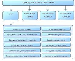 Оценка обеспеченности работников средствами индивидуальной защиты   Российской Федерации и в соответствии с Типовыми нормами обеспечения работников определенной профессии должности средствами индивидуальной защиты