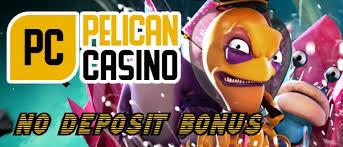 €15 No Deposit Bonus at Pelican Casino   AnyGamble