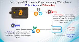 This is public information and is visible to everyone. What Is A Bitcoin And Cryptocurrency Wallet Types Of Cryptocurrency Wallets And How Do They Work Mindyourcrypto Mindyourcrypto