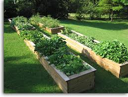 Small Picture Raised Vegetable Garden Design Ideas decorating clear