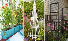 Small Picture Build an Easy Garden Trellis
