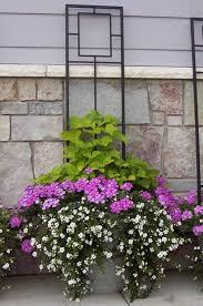 Easy To Create Container Gardens For Houston SummersContainer Garden Ideas Full Sun
