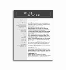 Combination Resume Examples Inspirational Free Bination Resume