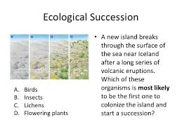 Primary Succession And Secondary Succession Venn Diagram 1 Phamescobar Cellular Respiration And Ecology 8318728645