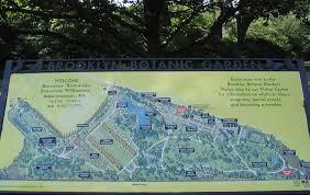 brooklyn botanic garden map near flatbush avenue entrance
