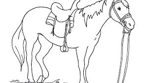 Arabian Horse Coloring Pages Cool Horses To Print And Color