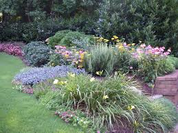 Small Picture Perennials Cutting Gardens