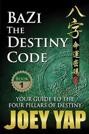 Bazi The Destiny Code Book 1