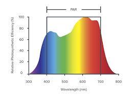 Action Spectrum Rethinking Light Wavelength In Planted Tank The 2hr Aquarist