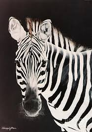 black and white painting zebra facing left by didi higginbotham