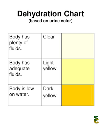 How Much Water Should I Drink A Day Chart Is 100 Oz Of Water A Day Too Much Answers On Healthtap