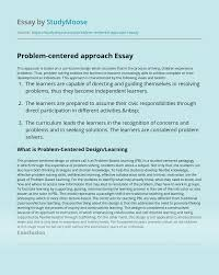 Experience Centered Design Problem Centered Design Essay Example