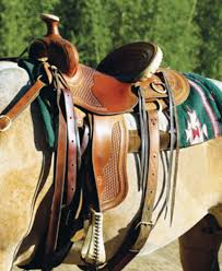 Light Up Horse Breast Collar Trail Saddle Weight Expert Advice On Horse Care And Horse