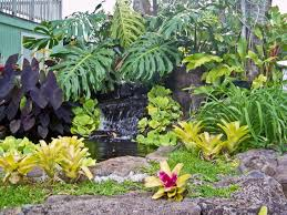 Small Picture Small Tropical Garden Design Ideas Container Gardening Ideas