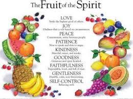 Fruit Of The Spirit Wall Chart Laminated Rose Publishing