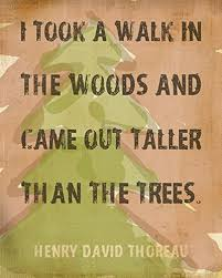 Thoreau Walden Quotes Extraordinary Amazon Outdoor Decor I Took A Walk In The Woods Walden