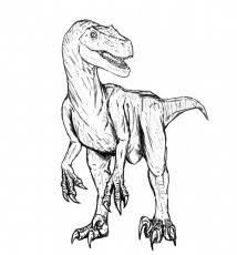 Small Picture Velociraptor Coloring Pages Dinosaurs Pictures And Facts 282948