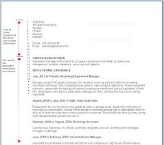 Formats For Resume Impressive Proper Resume Layout Proper Format For Resume Formatting A Resume