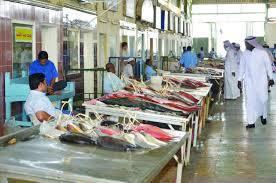 مرسى الصيادين وسوق السمك Yanbou Marina boats
