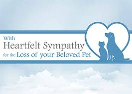Sympathy Card Pet Loss Pawsitive Resources Pet Loss Products
