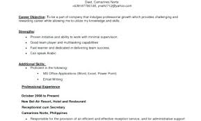 What Is An Objective On A Resume Good Objective On A Resume Great Resume Objective Statements