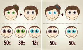 Eye Color Chance Chart The Eye Colour Combinations Your Baby Could Have Based On