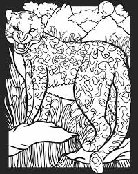 wele to dover publications creatures of the night stained gl coloring book
