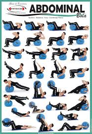 Exercise Charts For Stability Ball Balance Ball Swiss Ball