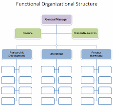Free Organizational Chart Template Business Organization Chart Organizational Chart Template