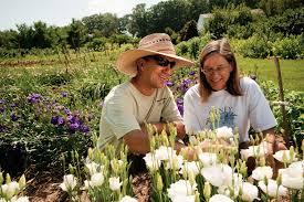 maryland nurseries garden centers