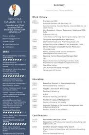 Ceo Resume Templates Free Guide Founder And Ceo Resume Samples