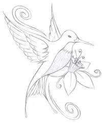 hummingbirds and flowers drawing. Wonderful Hummingbirds Sketches Of Hummingbirds With Flowers In Hummingbirds And Flowers Drawing