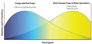 Revolutions In Agriculture Chart A Course For Targeted