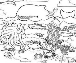 Sea Life Coloring Pages Free Archives Inside Sea Life Coloring ...